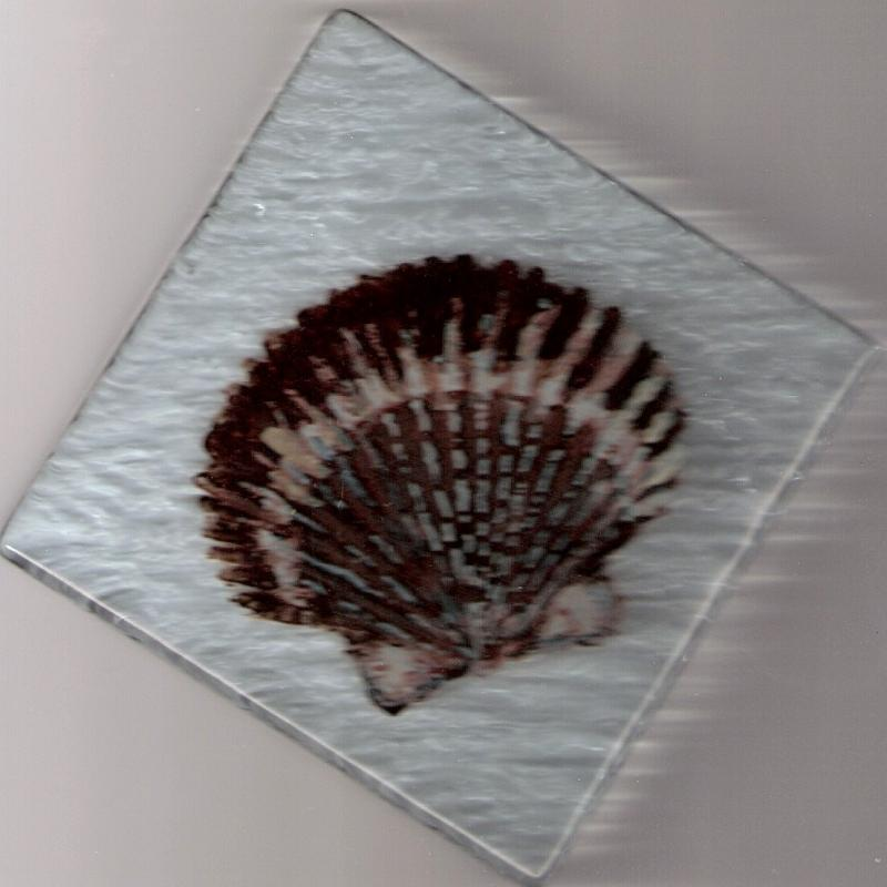 cape cod,shell tiles,scallop shell,glass tile,reverse glasspainting,susan davie